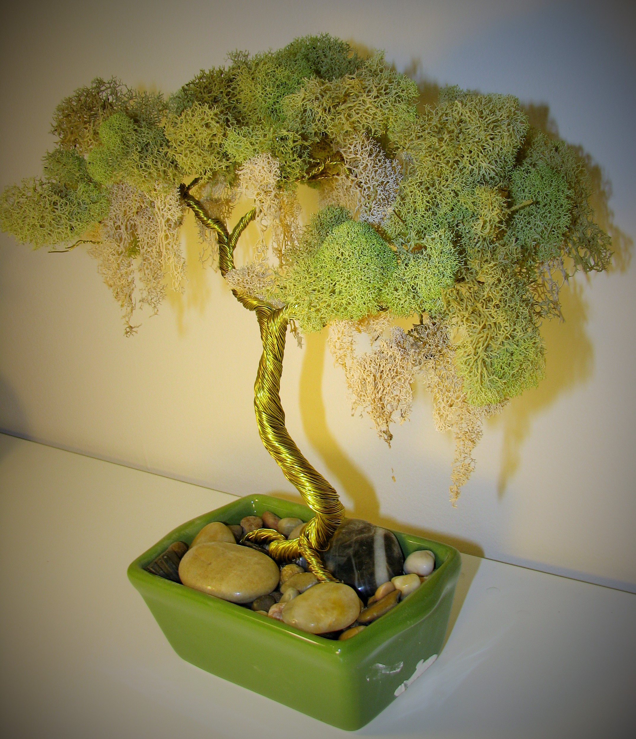 Gold Wire Moss Bonsai Sold The Wind On Wiring A 55